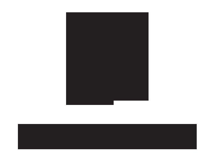 Alston - Brushfire Marketing Solutions
